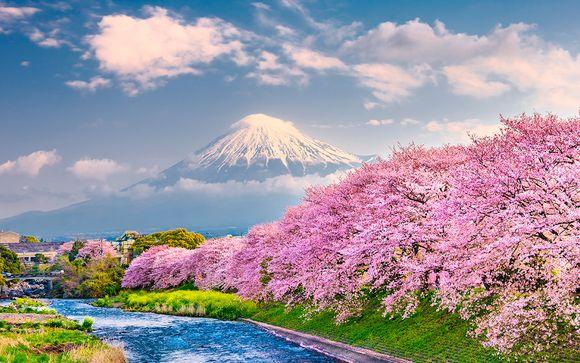 Japón en Libertad