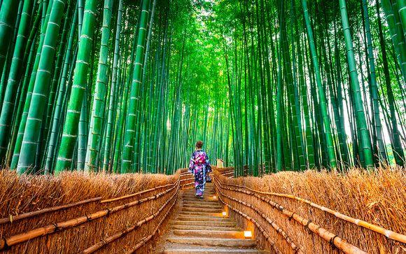 Descubriendo el lado zen de Japón