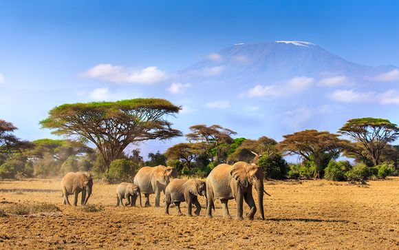 Kenia Diani Beach - Southern Palms Beach Resort 4* con safari desde 1.113,00 €