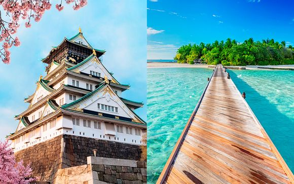 Fascinante cultura japonesa e idilio en el paraíso