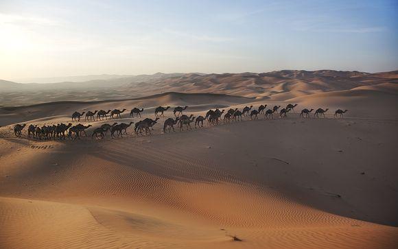 Tus días previos en Dubái opcionales