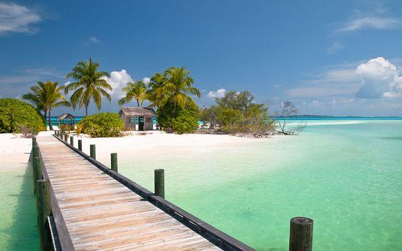 Miami y Bahamas (solo opción 2) te esperan