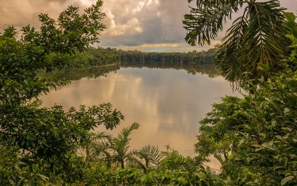Extensión a Amazonas  en hotel Standard (solo con opción 2)