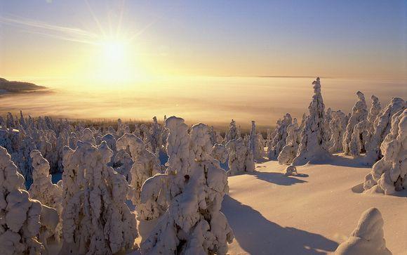Rendez-vous... en Laponie Finlandaise