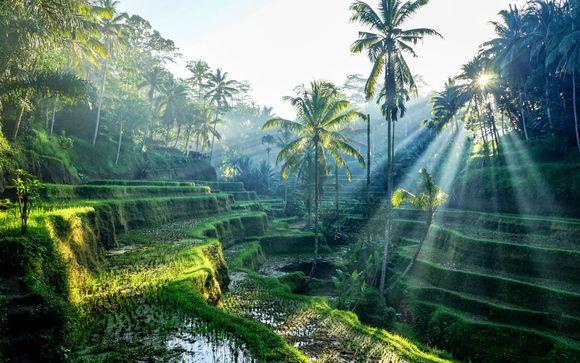 Bali en toute simplicité et pré-extension possible à Singapour