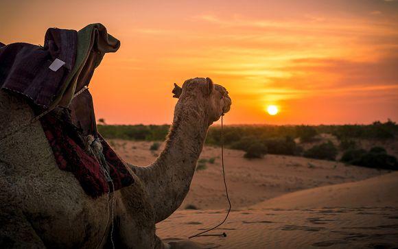 Rendez-vous... au Sénégal
