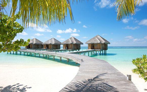 Photographie des îles Maldives, palmiers et eaux turquoise avec hôtel donnant directement sur la plage