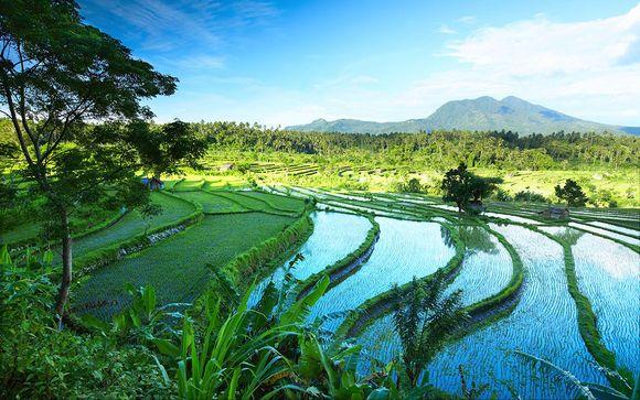 Circuit Merveilles de Bali avec ou sans extension