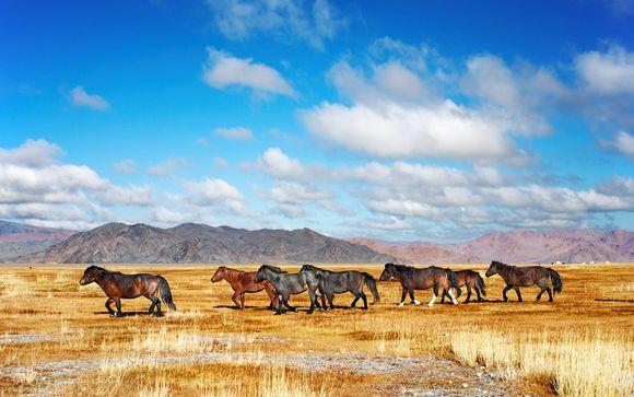 Rendez-vous... en Mongolie