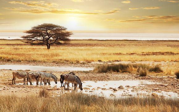 Circuit Safari de r�ve � la d�couverte de l'Afrique du Sud en 10 j...