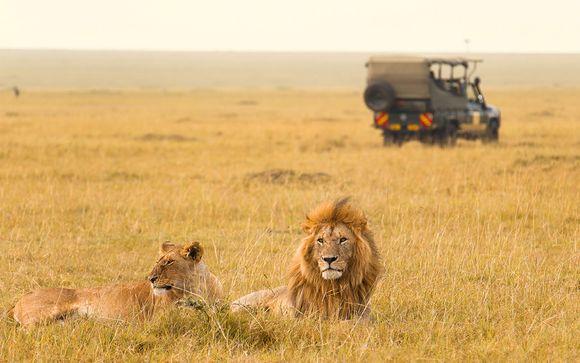 Rêve d'enfant en safari