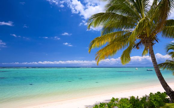 Rendez-vous... dans l'océan Indien