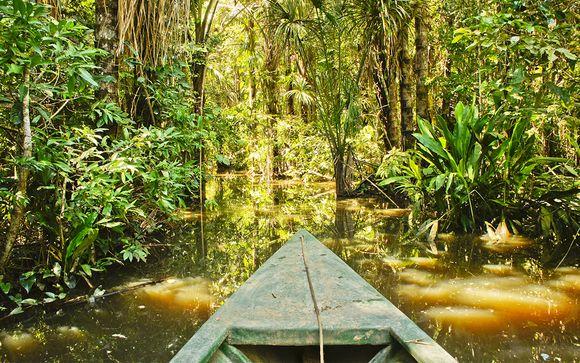 Choix 1 : Zoom sur votre programme en 14 nuits avec extension en Amazonie
