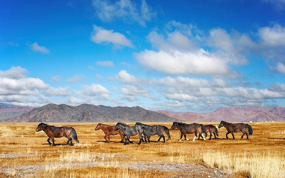 Suivez-nous... En Chine et en Mongolie