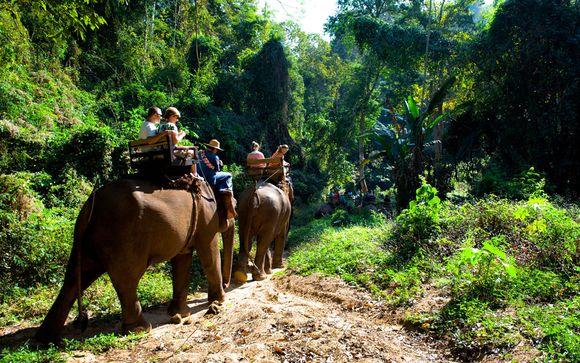 Suivez-nous... En Thaïlande