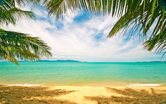 Croisière Caraïbes : zoom sur votre programme