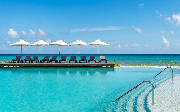 Rêveries sans limites sur la Riviera Maya