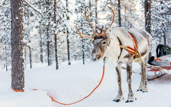 Aventures Polaires en Scandinavie 7 jours/6nuits