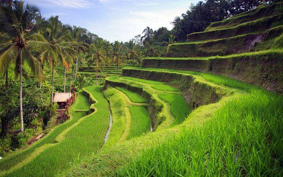 Rendez-vous... Bali