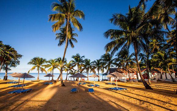 Bungalow, vue mer et cocotiers
