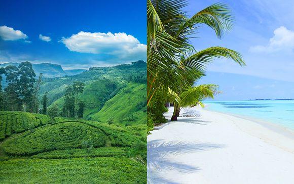 Duo d'îles aux trésors