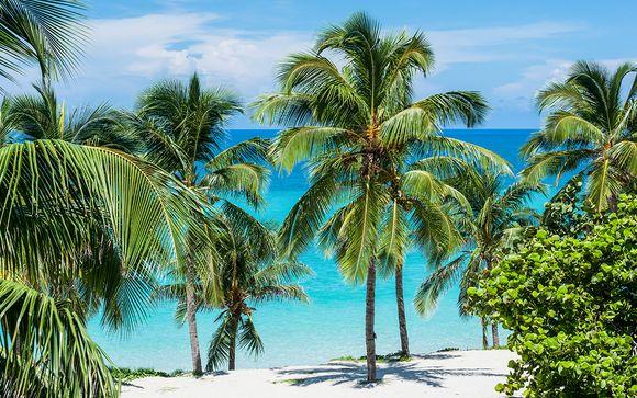 Entre ville et plage sur une île authentique