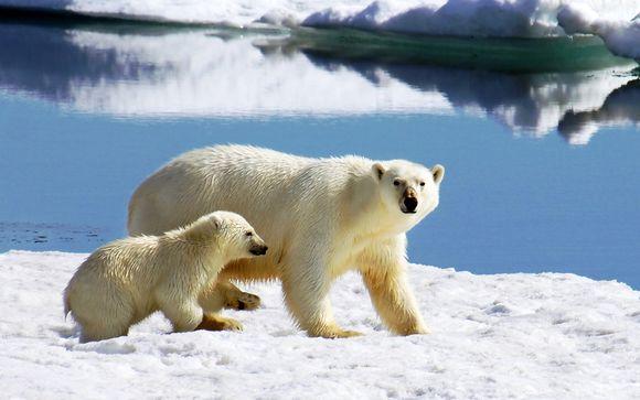 Croisières en Arctique en 13 ou 17 nuits