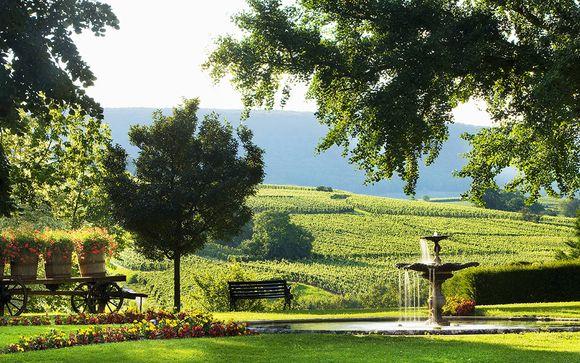 Combiné La Route des Vins d'Alsace