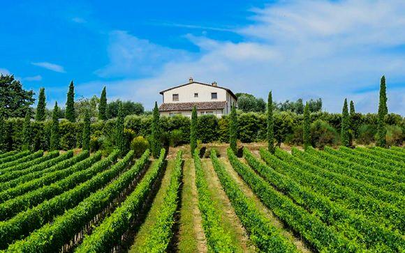 Le Buche Wine Resort & Spa