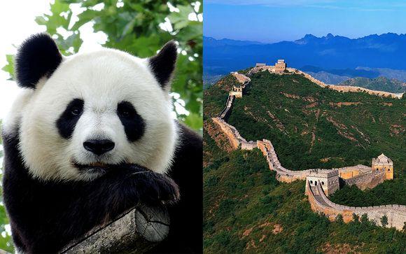 Tour Cina, tra antico, moderno e Panda giganti
