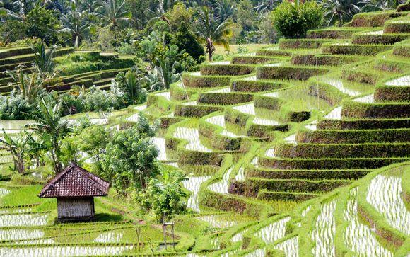 Itinerario 1 - Meravigliosa Bali