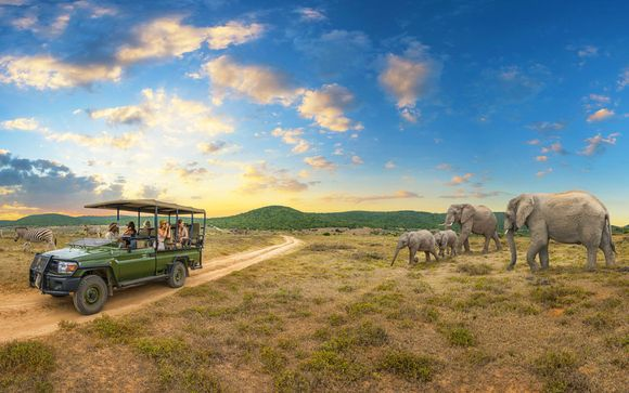Circuito Big Five in Sudafrica & Radisson Blu Azuri Resort & Spa 4*S