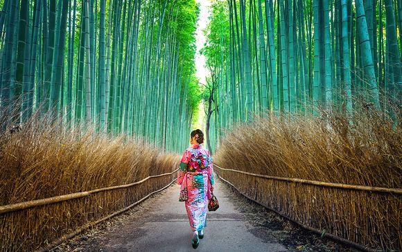 Alla scoperta del Giappone tra atmosfere zen e tradizione