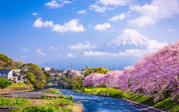 Tour i profumi del Giappone