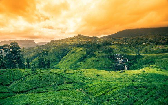 Alla scoperta dello Sri Lanka