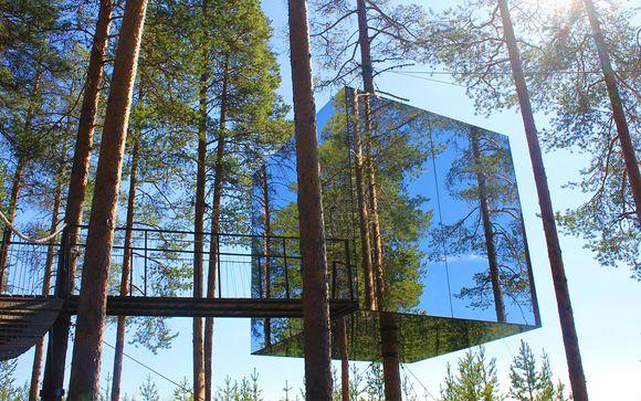 Lapponia tra natura e design con notte in hotel sull'albero