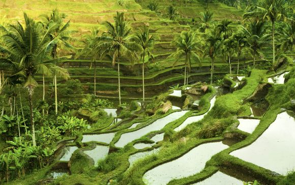 Offerta 1 - L'itinerario del tour dell'Indonesia