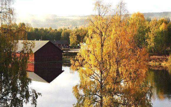 Stoccolma e Ockelbo immersi nella natura della Svezia
