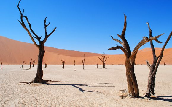 Fly& drive alla scoperta della Namibia