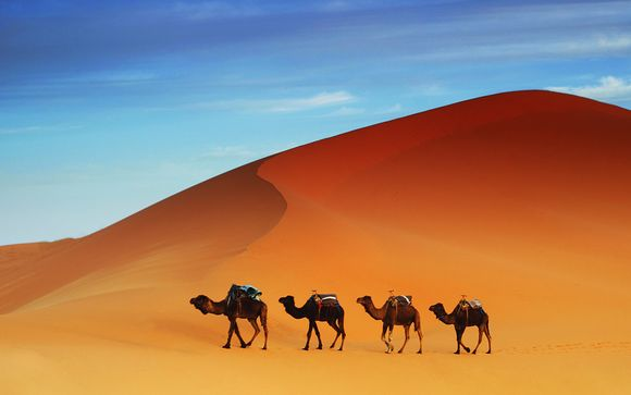 Tour Monte Atlante, canyons e deserto del Sahara
