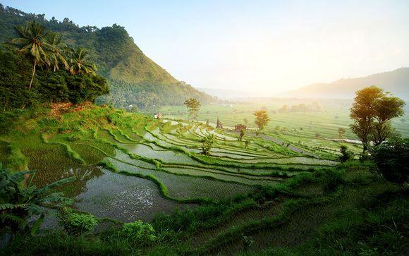 Tour alla scoperta dell'autentica tradizione balinese