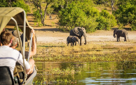Alla scoperta del Botswana