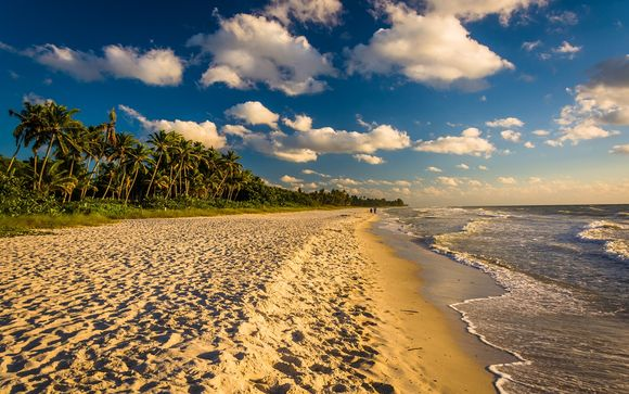 Alla scoperta di Miami e Naples