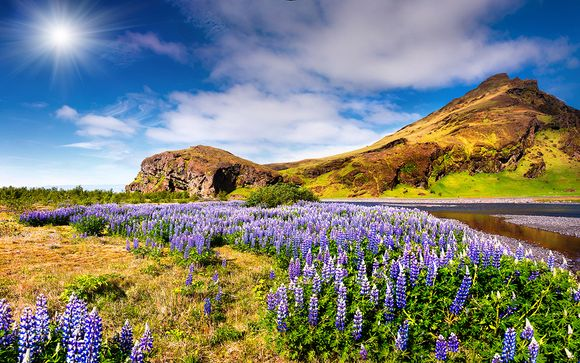 Welkom in...IJsland