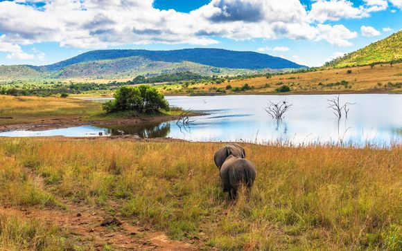 Welkom in... Zuid-Afrika!