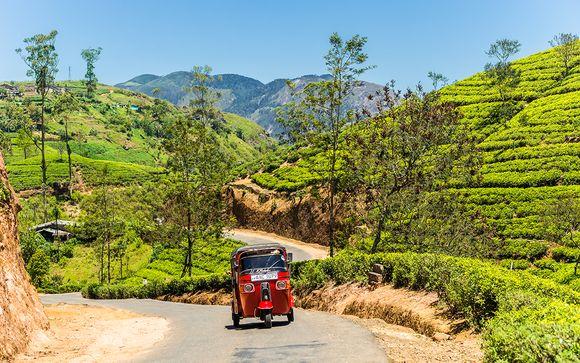 Uw reisprogramma in Sri Lanka