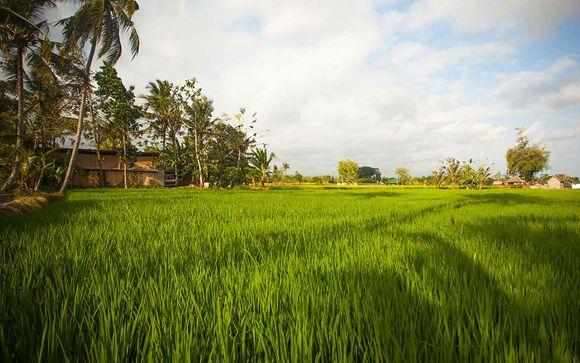 Optional Anulekha Resort and Villa 4*