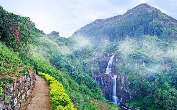Sri Lanka Tour with Remarkable Nature and Scenery