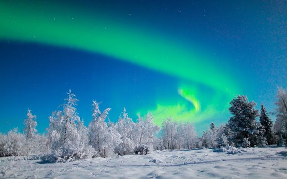 Helsinki & Harriniva Wilderness Lodge