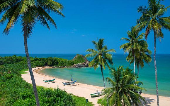 Sri Lanka Round Tour & Shinagawa Beach Stay